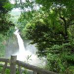 滝(展望台から)