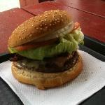 hamburger with fresh lettuce, tomato and onion