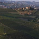 A wiew of some wineyard of the Baldovino family whit the Castle of Burio in the back.
