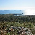 Mt Battie lookout to Camden