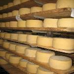 formaggi di nostra produzione