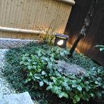 Japanese garden in your room