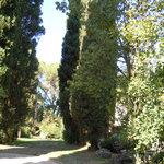 Κήπος της Ninfa - Φυσικό Μνημείο