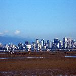 View of Vancouver from Spainish Banks at low tide