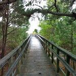 Kiptopeke State Park