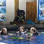 Pool Training Facilities