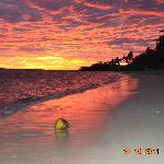 coconut in the water + amazing sunset in paradise