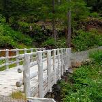 Along Heart Lake Trail