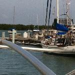 Salinas Marina 2