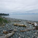 小さな石がいっぱいの海岸