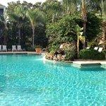 Resort pool w/ cushioned lounge chairs