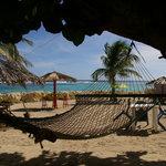 vue du restaurant côté plage
