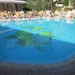 schwimmingpul