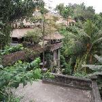 Ubud scenery