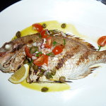 Baked baby Snapper special