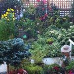 Helen's Place Garden