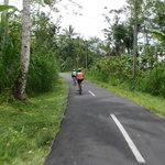 BaliGoBike - Bali Cycling Tours Foto