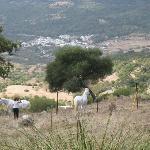 View from Las Lagunetas