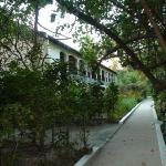 the path around the island