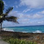 paseo por la isla