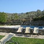 swimming pool by the olive grove