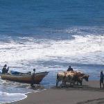 Fishermen at Buchupureo