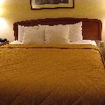 The king bed has night stands on either side, and five pillows.
