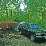 Wooded Tent Sites