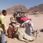 Camel Ride - Rhino Safari