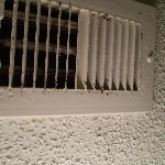 Mold and mildew coming out of vents