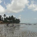 Espectacular Playa Miramar Maragogi Resort