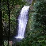 Multnomah Falls - Lower Falls