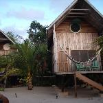 Green Parrot Beach House