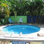 Small Pool in the Courtyard