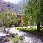 Jardin y recepcion