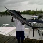 Freeport Grand Bahama Deep Sea Fishing