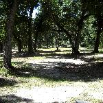 park grounds in front of visitor center