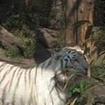 Amersfoort Zoo