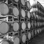 Love those Barrels
