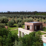 Vue de haut sur la jardin d'oliviers et de plantes aromatiques
