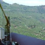 Foto de Blackberry Hills Retreat & Spa