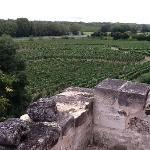 Demeure de la Vignole Foto