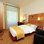 Room Hotel Eden Geneva