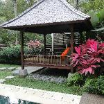 Ayung villa - day bed & pool