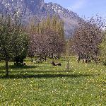 Foto de Refugio Patagonico