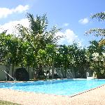 Pool and tropical gardens