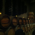 Wine barrels lining the walls