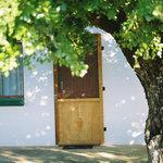 Porcupine Cottage Outside