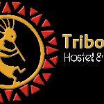www.tribohostel.com