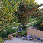 Il giardino e piscina